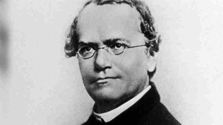 Mendel's Laws - Biology Questions and Answers
